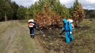 Травим клещей на СиБирской поляне. 2017