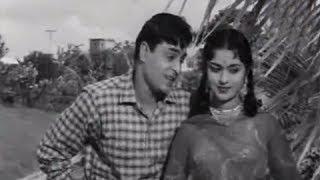 Teri Pyaari Pyaari Surat - Superhit Classics Romantic Song - Rajendra Kumar & Saroja Devi - Sasural