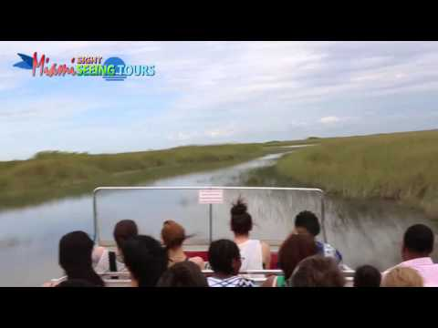 Miami Sightseeing Everglades Tour