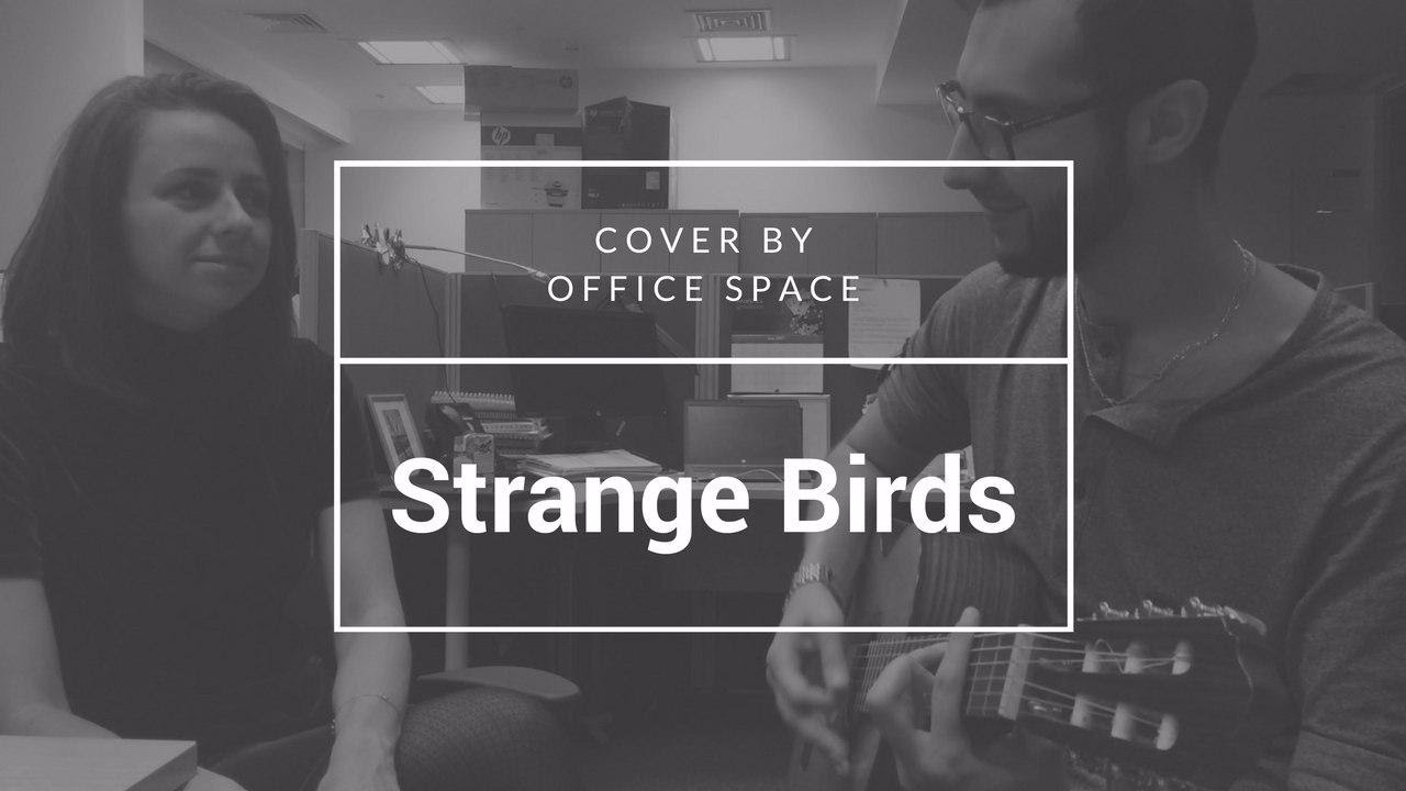 office space cover. Strange Birds - Birdy | Office Space Cover U