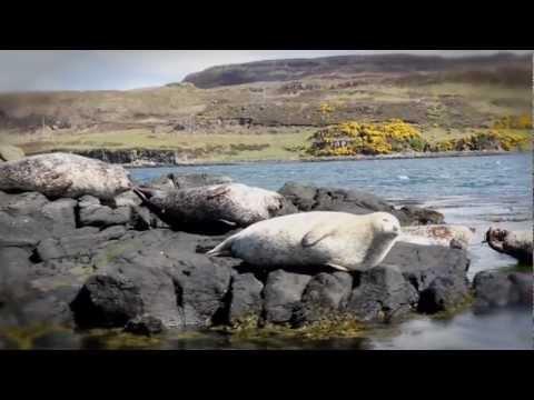 Hebridean Island Cruises Film