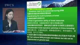 Sustainable Forest Management and Wood Culture