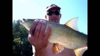 Рыбалка на перекате. Ловля голавля и жереха. Красота уральской природы.