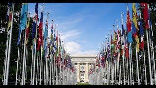 Baixar Boa noite 247 (18/8/18) – ONU oferece ao STF uma saída honrosa