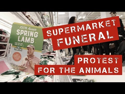 SUPERMARKET FUNERAL || For the ANIMALS // Feat. LEGION DX Sydney (ITA Sub)
