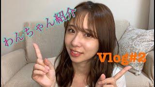 皆さん、こんにちは 岡田彩花です! Vlog・YouTube投稿 第2弾!!! 前回の投稿で言った通り 月1ペースになっちゃってる   慣れるまでは 時間かかると思いますが 頑張り ...