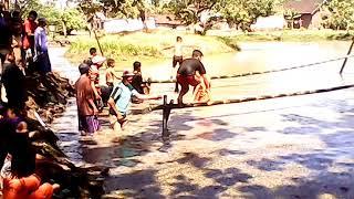 Lomba Nguwot