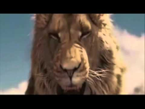 King Aslan of Narnia by PT