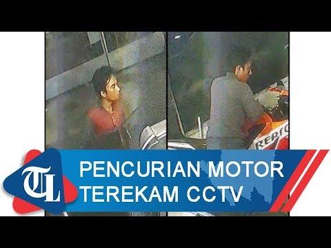 Pencurian Motor Terekam CCTV | Tribun Lampung News Video