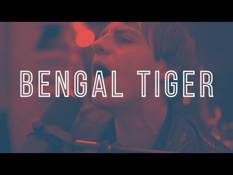 Bengal Tiger - Live @ Vintage Audio Shop