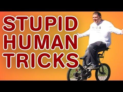 Stupid Human Tricks | Stunt and Trick Fails