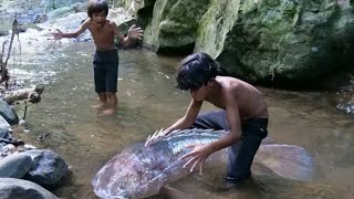 Primitive Technology - Eating delicious - Cacth big fish and cooking