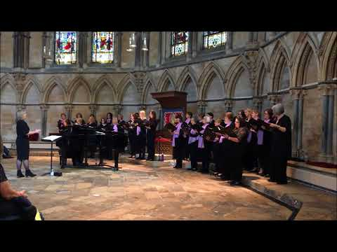Di Voci Ladies Choir - Here in my Heart - Recital in Lincoln Cathedral