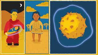 WHO: Vaccine-derived polioviruses