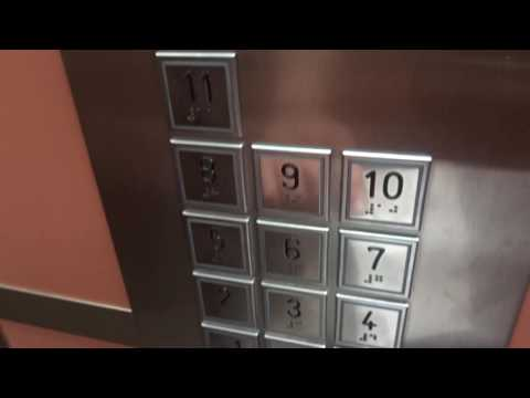 Ritual del ascensor (Creepypasta) ESTA VEZ BIEN HECHO. (Leer descripción)