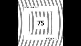 75ème Pulsation - SOUL HABITAT