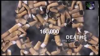 Марихуана и ее воздействие на здоровье документальное видео