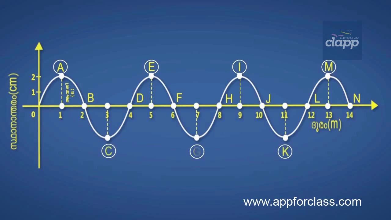 Amplitude (Malayalam)   Class 10   Physics