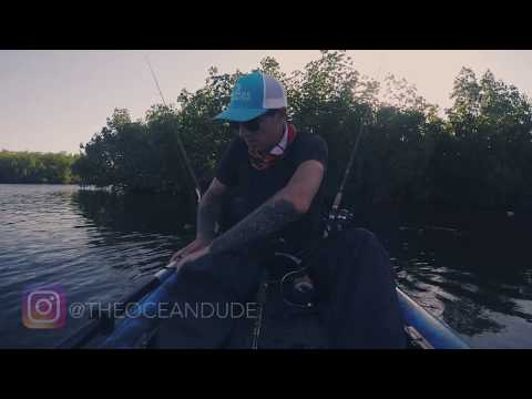 Looking For Big Jacks In Cape Coral Saltwater Canals Episode 3