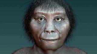 El Hobbit de la isla de Flores no evolucionó del Homo erectus