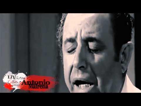 LIV Festival de Cante Jondo Antonio Mairena - Presentación en Casa del Flamenco