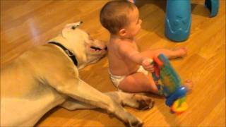 "Baby plays with her ""nanny dog"""