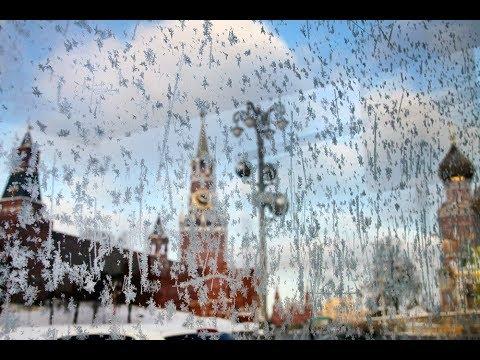 Синоптики предупредили москвичей о заморозках в ночь