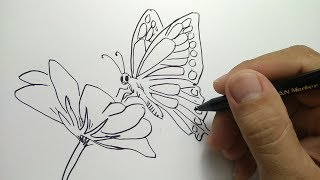 cara menggambar kupu kupu / how to draw butterfly
