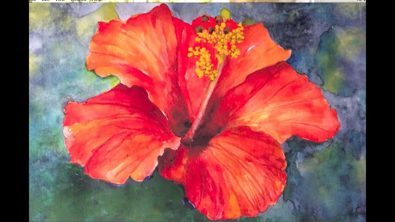 Hibiscus flower watercolor tutorial an easy step by step for How to paint a rose in watercolor step by step