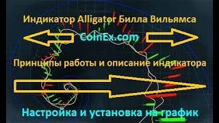 Индикатор Alligator Билла Вильямса - описание | бинарные опционы аллигатор как работает