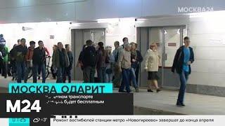 Проезд на общественном транспорте для девушек 8 Марта будет бесплатным - Москва 24