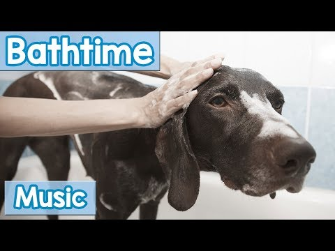 Music for Dogs at Bath Time! Music to Comfort and Calm Your Dog During Bathing and Grooming!