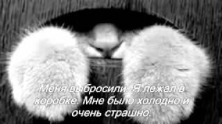 Котёнок Мышкин