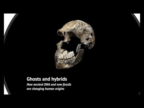 Ghosts and Hybrids: How ancient DNA and new fossils are changing human origins