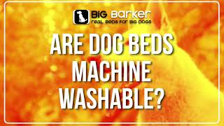 Are Dog Beds Machine Washable?