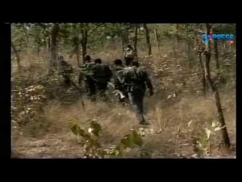 Maoists Killed in Nallamala Forest in Mahbubnagar district - Special story