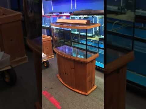 46 Gallon Bowfront Aquarium Fish Tank Complete Set Up $200