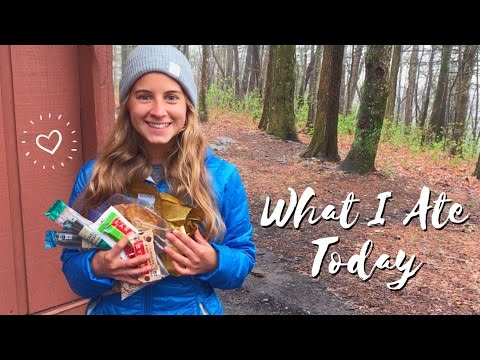 WHAT I ATE TODAY ON THE APPALACHIAN TRAIL