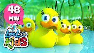 Download Video Five Little Ducks - THE BEST Nursery Rhymes and Songs for Children | LooLooKids MP3 3GP MP4
