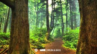 MOR DNB Guest Mix : Radias (Deep Drum and Bass).