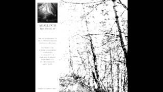 "Agalloch - ""Birch White"" - The White (EP)"