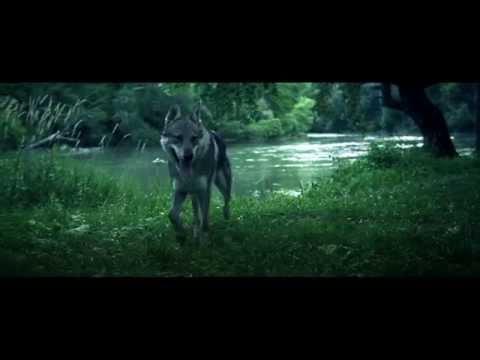 KALI - DOSNÍVANÉ [NOVÝ ZAČIATOK] prod. EL MURDO/MAREK ŠURÍN [OFFICIAL VIDEO]