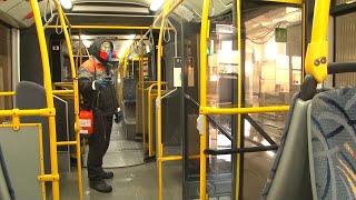 Дезинфекция. Санобработка общественного транспорта в автопарке