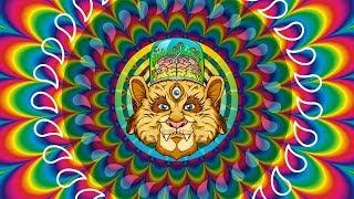 LSD vs Psilocybin - long-term subjective effects according to science Video