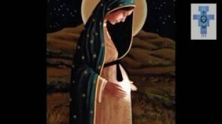 Noche de Paz [Villancico] - Los Niños Cantores de Navidad