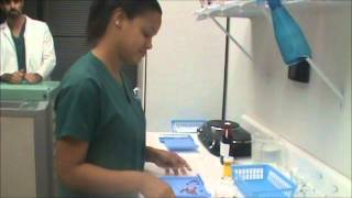 Counting Prescription Medication for Pharmacy Technicians