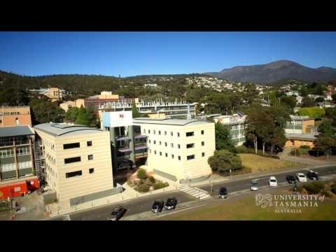 Studying Undergraduate Business and Finance: The UTAS Difference