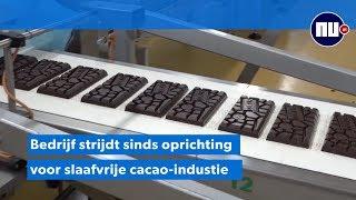 Tony's Chocolonely koopt 'veel te dure' chocola in strijd tegen slavernij