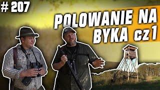 Darz Bór odc. 207 - Polowanie na byka w rykowisku cz. 1