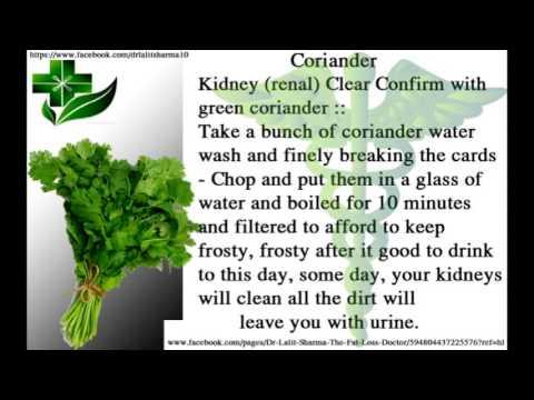 Kidney - Dirt - Gandagi - Clean - Eat  Coriander English Official Video 2015 - Latest - Healthy Life